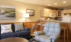 CV5 Living Room Kitchen
